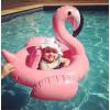一件代发 爆款充气儿童天鹅游泳座圈火烈鸟游泳圈 婴幼儿游泳圈